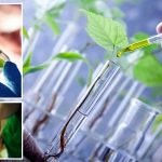 What is the Curriculum of M.Tech in  Plant Biotechnology Covers