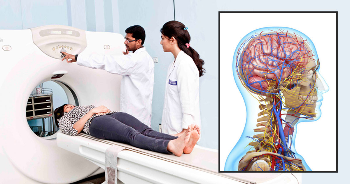 career neurologist Myplancom is unquestionably the best resource on the internet for career and college information their long list of free services includes career profiles, career videos, salary data, college profiles, information on majors and degrees, financial aid advice, and career assessment tests.